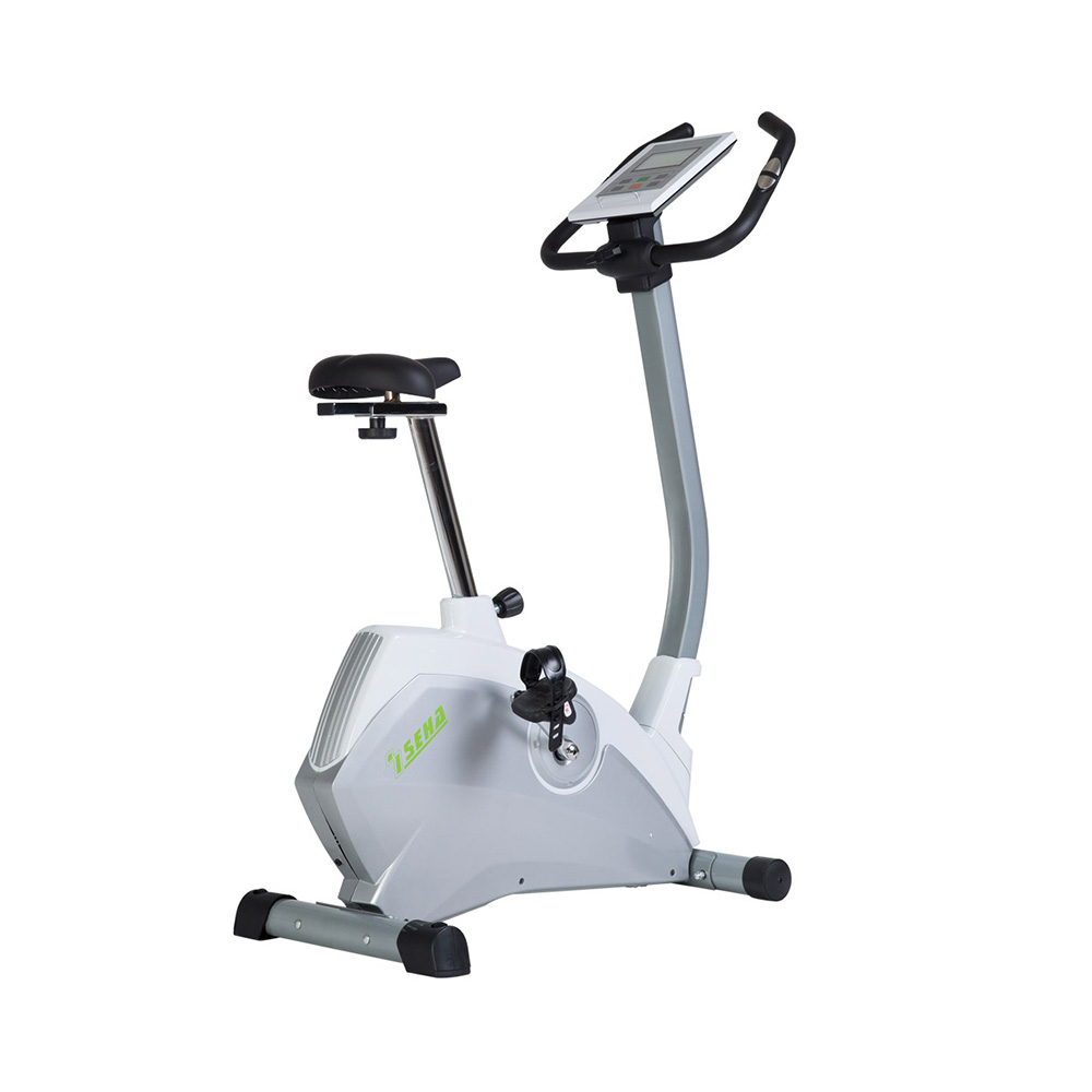 Exercise Bike Magnetic Resistance