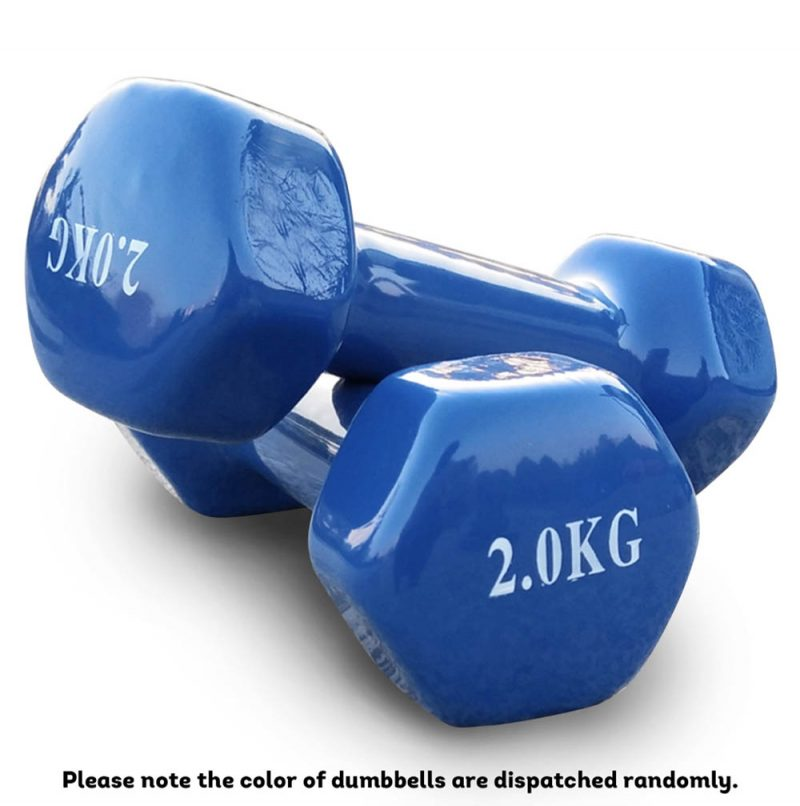 Hex Dumbell Coating Iron Dumbells Home Gym Weight Training Workout